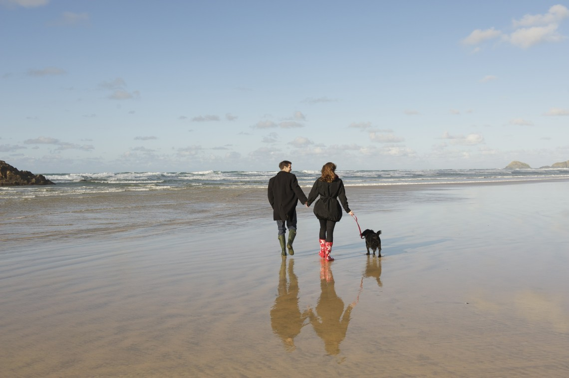 A couple and their dog walk along the beach.